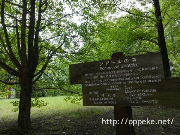 神戸森林植物園,シアトルの森
