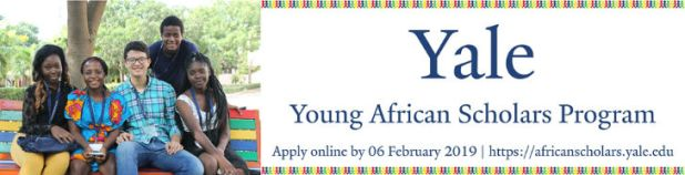 The United Nations ECA Fellowship 2019 for Young African