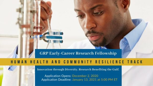 NASEM Gulf Research Program Early-Career Research Fellowships 2021 (Funding available)