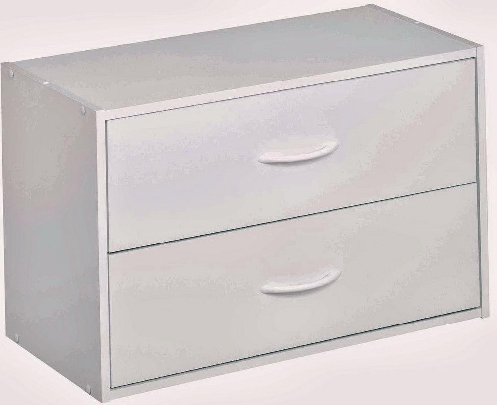 2 Drawer Plastic Organizer