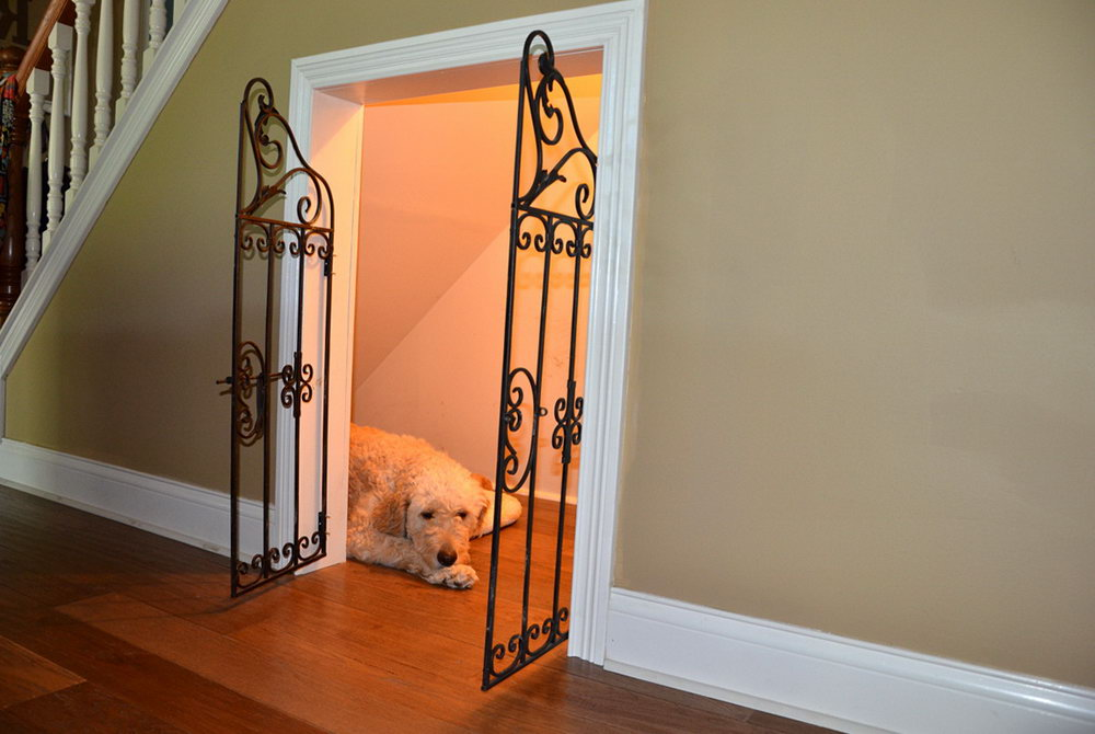Making A Closet Into A Dog Room
