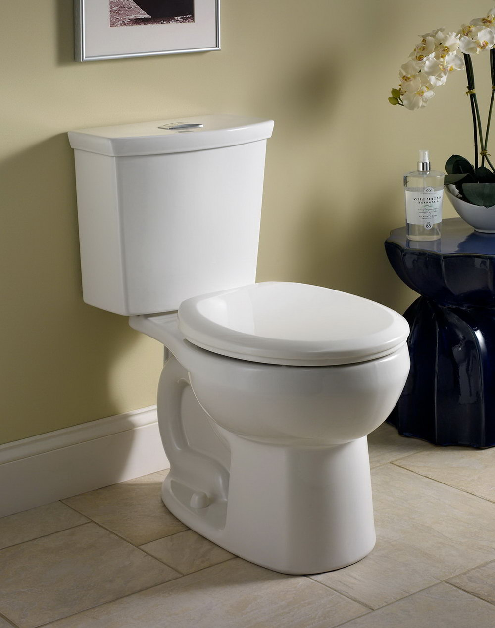 American Standard Water Closet Price Philippines