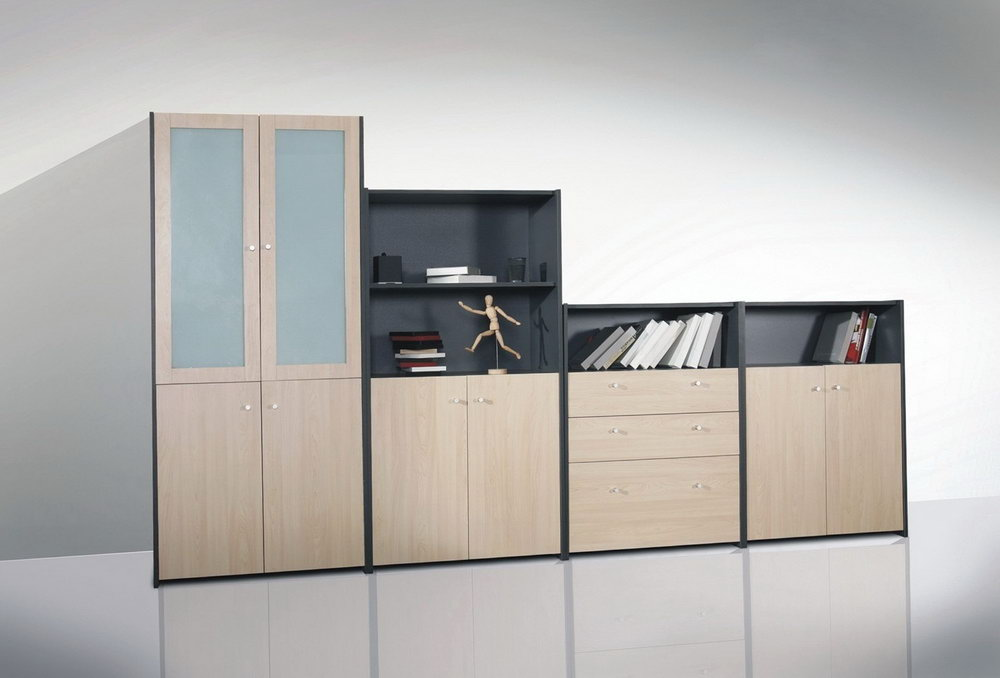 Office Storage Cabinets With Glass Doors