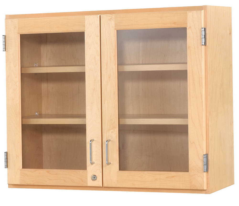 Wall Mounted Storage Cabinets With Doors