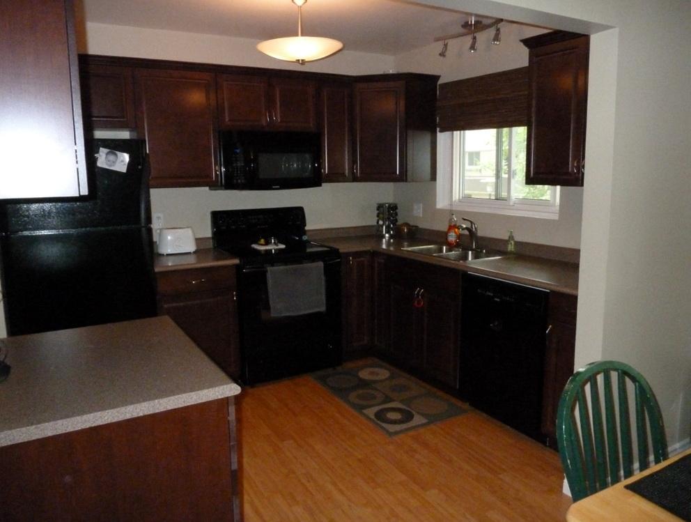Best Kitchen Cabinet Colors With Black Appliances
