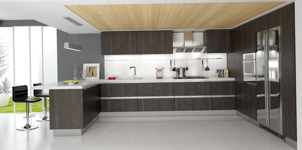 Pics Of Modern Kitchen Cabinets