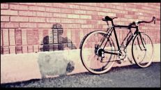 bike_walpaper22