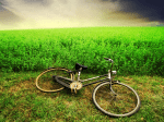 bike_walpaper63