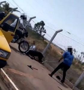 ataque de rottweiler em Rio Preto