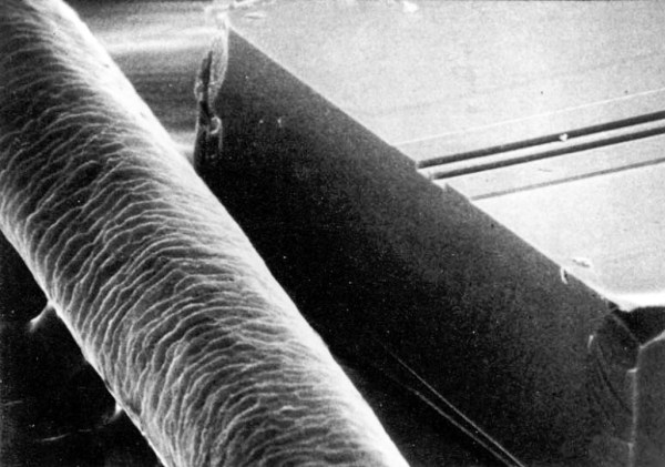 Semiconductor stripe laser with human hair for size comparison