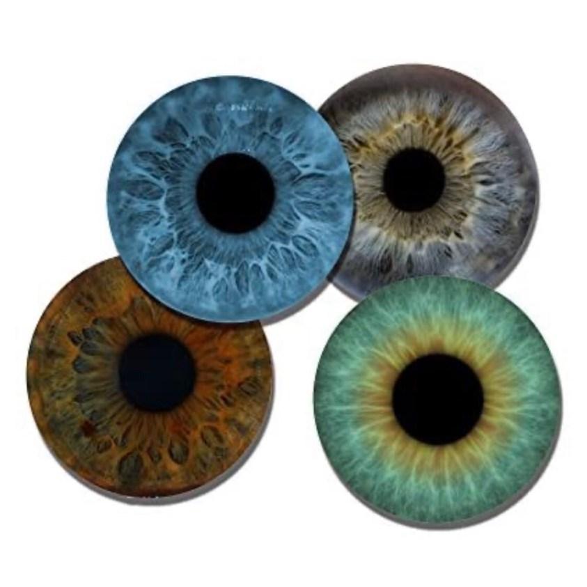 eye coasters