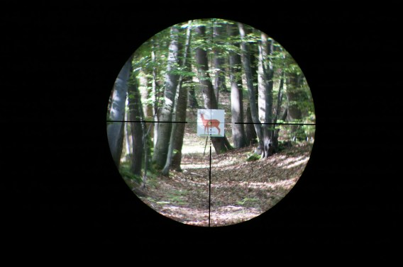 Leica Magnus 1.5-10x42 reticle Ballistik subtensions at 6x