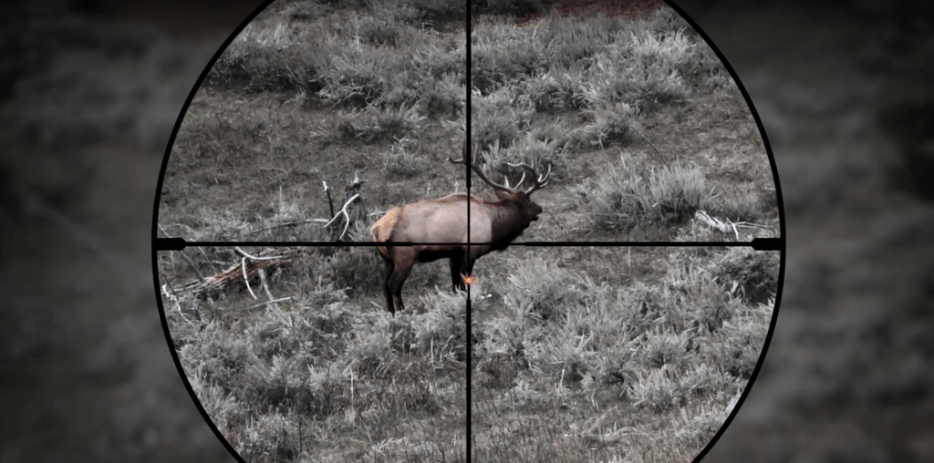 Holdover dot displayed on the BDX-R1 reticle of the SIERRA BDX riflescope (Source: Sig Sauer Optics)