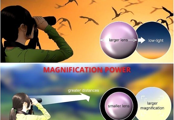 magnification power
