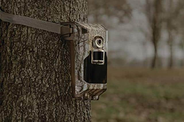 Best Wireless Trail Cameras 2020