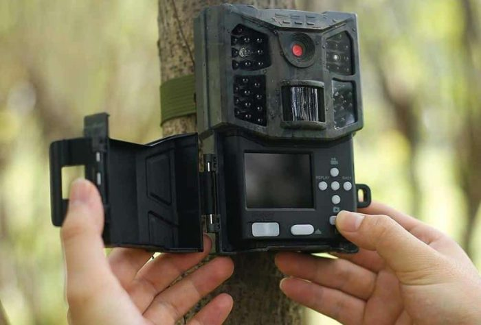 Best Motion Activated Wildlife Cameras