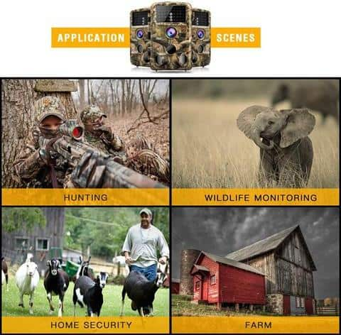 Best Trail Cameras For Security