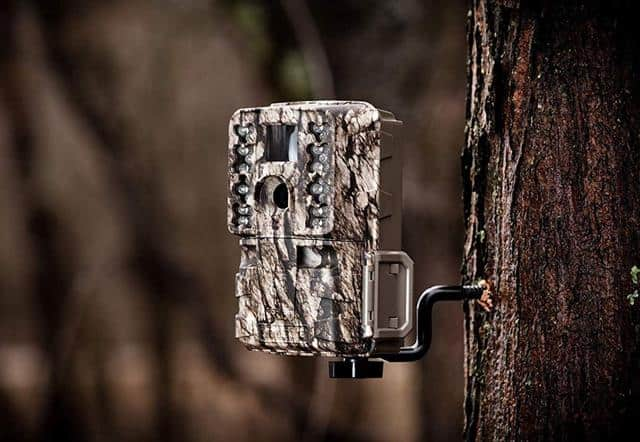 How To Setup And Use Trail Cameras Tips