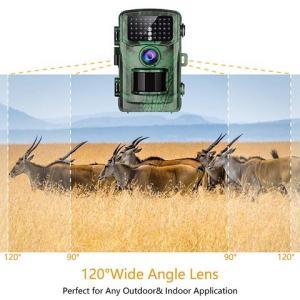 Best Motion-activated Wildlife Cameras