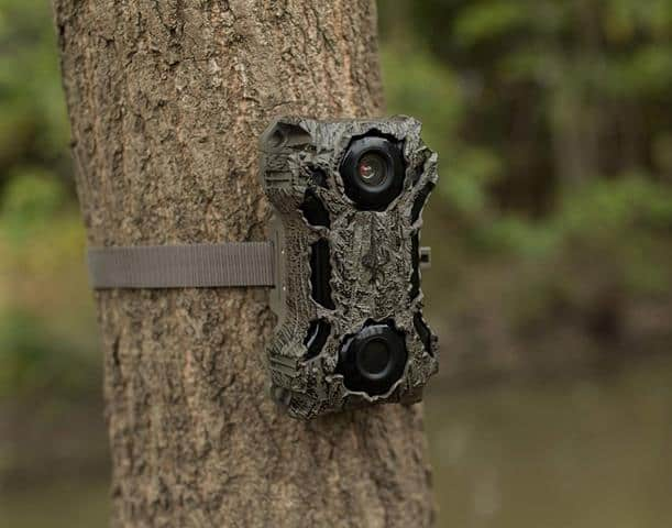 Best Wildgame Innovations Trail Camera