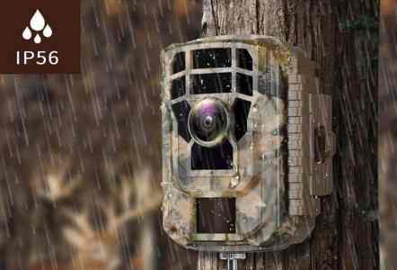 How Do Trail Cameras Works