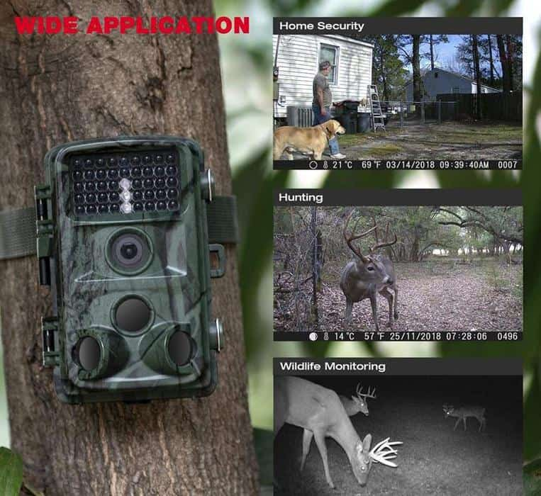How To Use A Trail Camera For Security