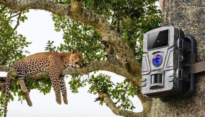 How To Program A Trail Camera