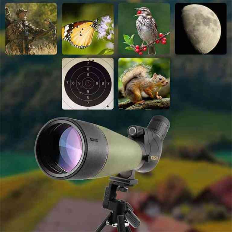 Spotting Scopes Vs. Binoculars