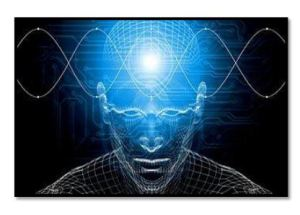 The Mind And The Brainwaves