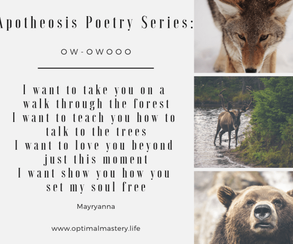 Apotheosis Poetry Series: Ow-Owooo