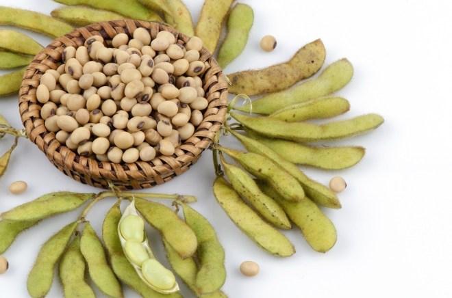 Soyaprodukter, grønsaker-frukt-reduserer-kjøtt-kreftrisikoen