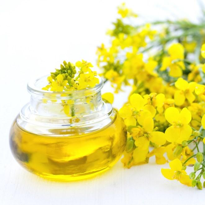 Rapsolje er sunnere enn olivenolje