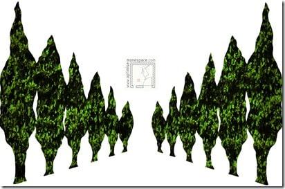 Comment agrandir un jardin : perspective arbres