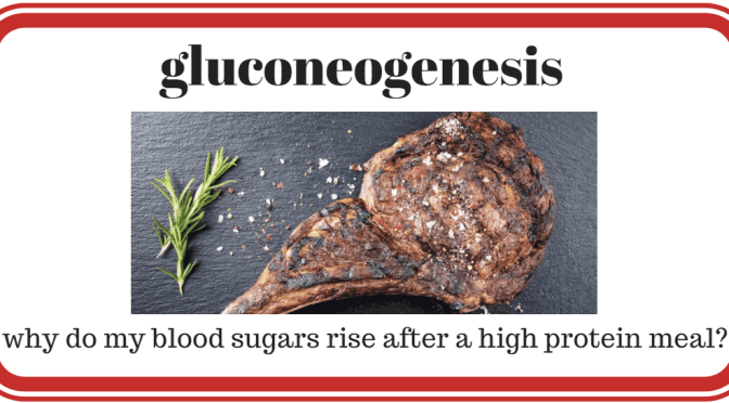 why do my blood sugars rise after a high protein meal?