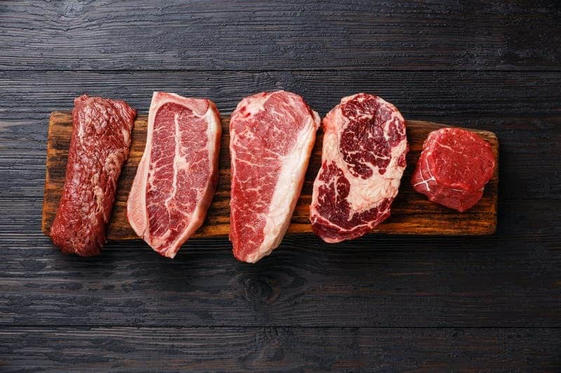how to do the carnivore diet