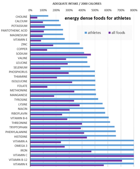 energy dense foods for athletes - with all foods.png
