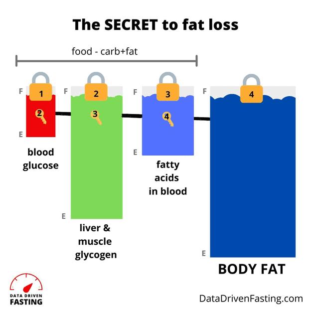 7 Day Fat Loss Flow Diet