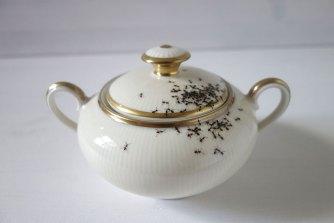 Обичате ли мравки в кафето си?