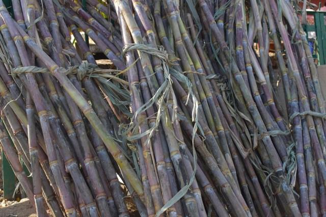 sugarcane anti aging face pack