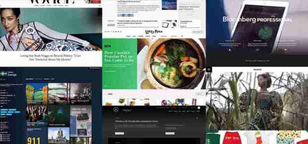 wordpress website showcs