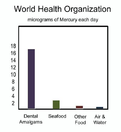 World Health Organization on Mercury