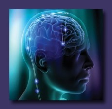 Brain Transmissions