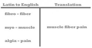fibromyalgia - latin to english breakdown - GRAY