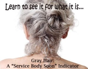Gray Hair - Learn to see it for what it is...service body soon indicator.