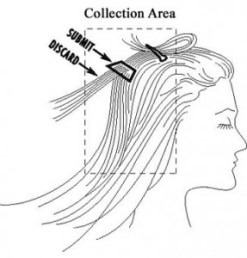 Collecting Hair Sample