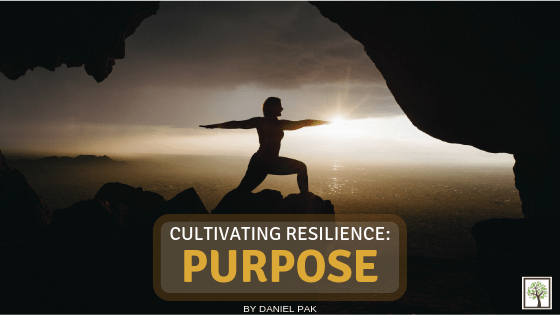 CULTIVATING RESILIENCE: Purpose