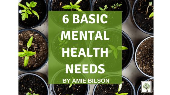 6 Basic Mental Health Needs