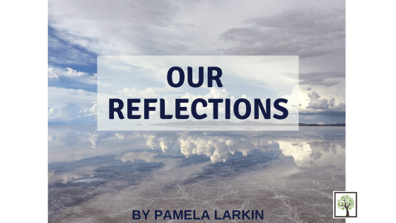 Our Reflections