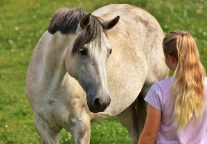 girl, love for animals, horse