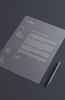 Letterhead Optimus Grafix